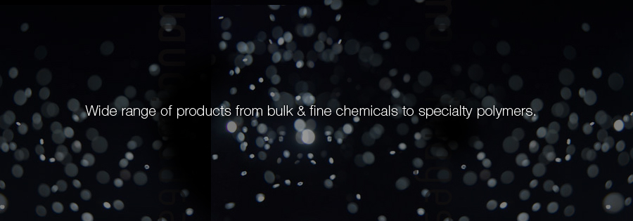 Wide range of products from bulk & fine chemicals to specialty polymers.